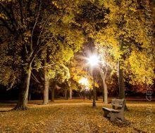 Nightlife at Bay View Park