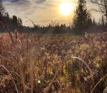 Fall Farm Fields