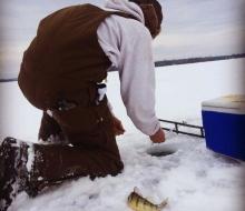 Abundant Perch on Grand Lake