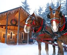 Sleigh Rides through the woods at Thunder Bay Resort