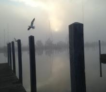 Fresh spring air at the Boat Harbor