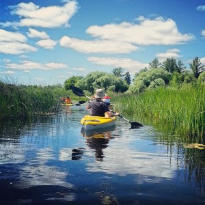 Kayaking through the city's 500-acre Wildlife Preserve.