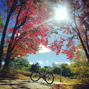 Enjoy Alpena from the free-spirited freedom of a bike along the city's 18.5 mile Bi-Path.