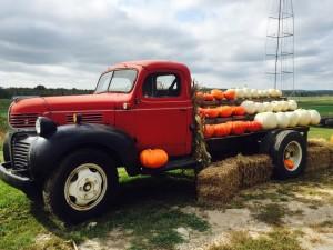 AJ's berry farm pumpkin truck