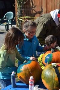 apple pumpkin fun day