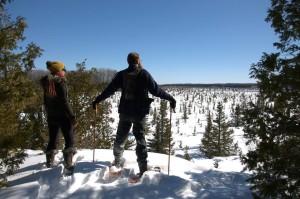 snowshoes jason lampel