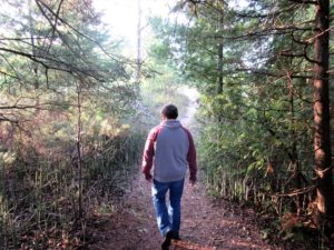 Hiking Island Park in Alpena, Michigan