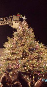 grinch-tree-lighting