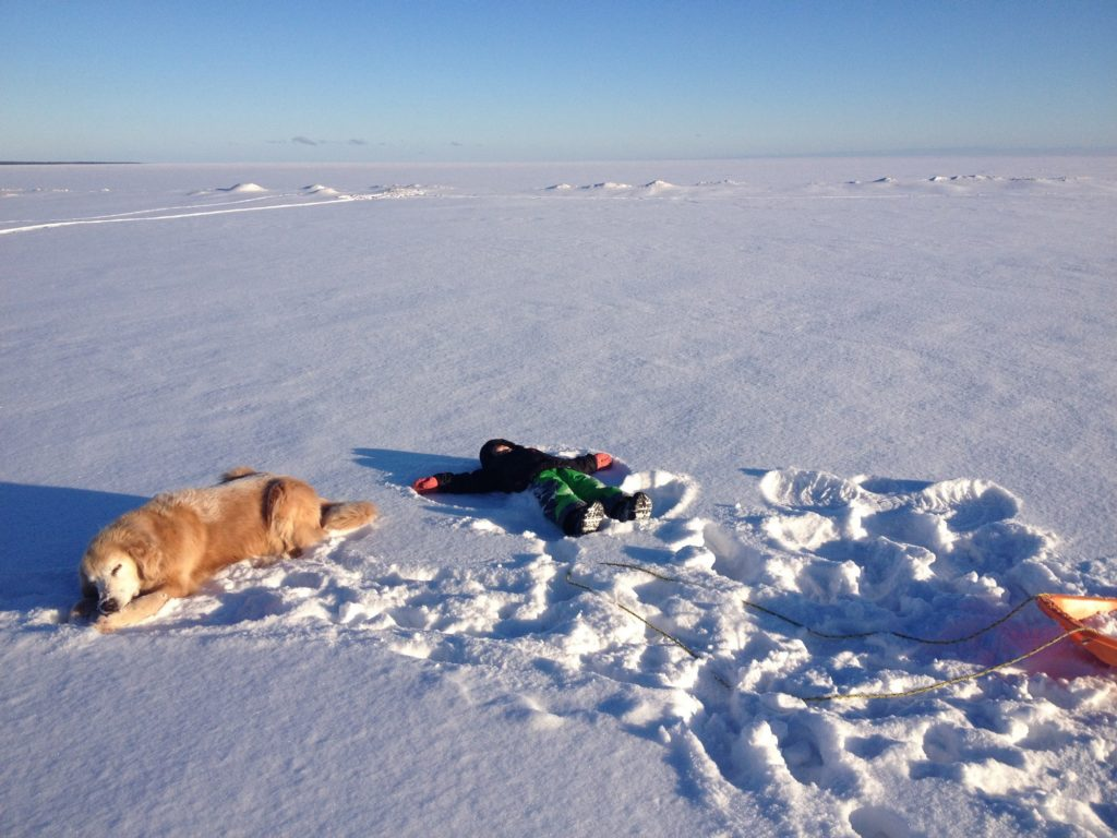 Dog and child laying in snow