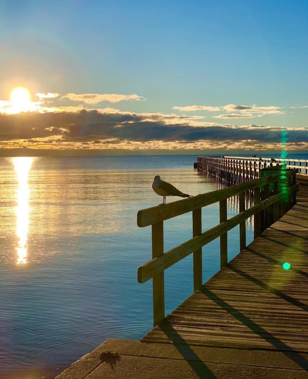 Autumn Mornings on Blair Street Pier. Photo by Justin Christensen Cooper.