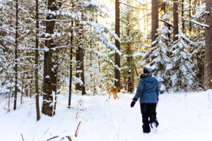 Winter forest bathing; photo courtesy Paul Gerow