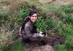 Hannah Hazewinkel plants a tree.